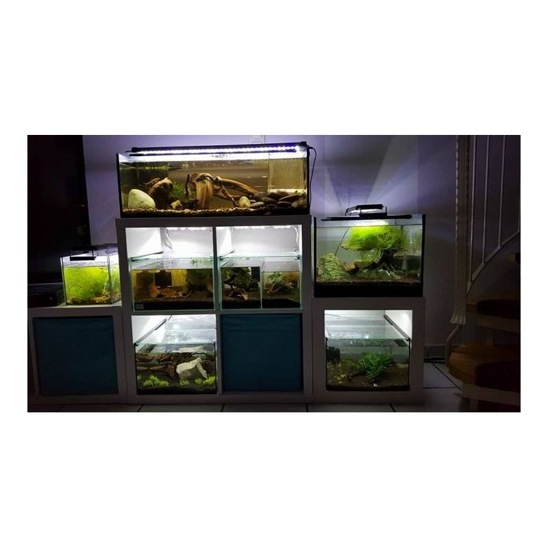 1 stk nano aquarium f r kallax regale 20 cm terra natur. Black Bedroom Furniture Sets. Home Design Ideas