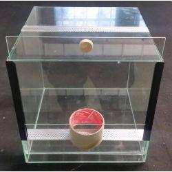 Terrarium 30x30x20 cm
